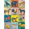 Póster Animales vintage