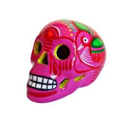 Pink Mexican skull with bird