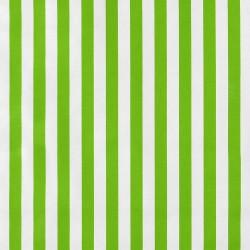 Green Rayas oilcloth