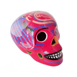 Hot pink Mexican skull with birds